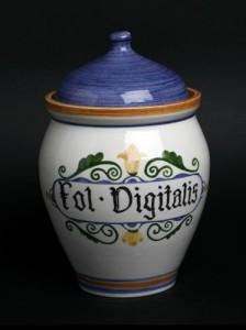 fol-digitalis--19-cm