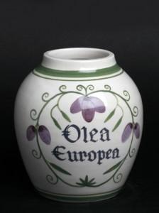 olea-europea--13cm