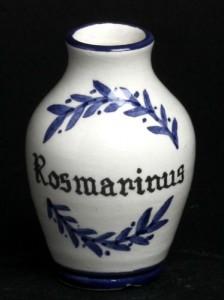 rosmarinus--10cm